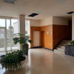 A louer type 3 Tours Avenue de Grammont par Gautard immobilier hall d'immeuble